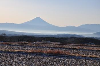 凍てつく朝1207-1.jpg