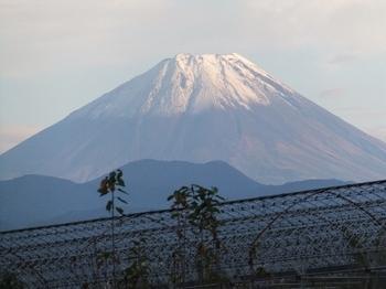 南アルプス市からの富士山-1.jpg