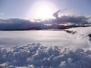 雪原と甲斐駒.jpg